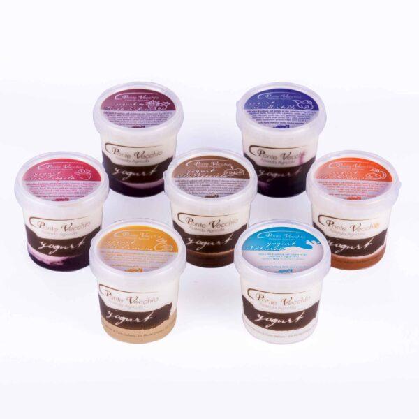 Yogurt produzione Ponte Vecchio